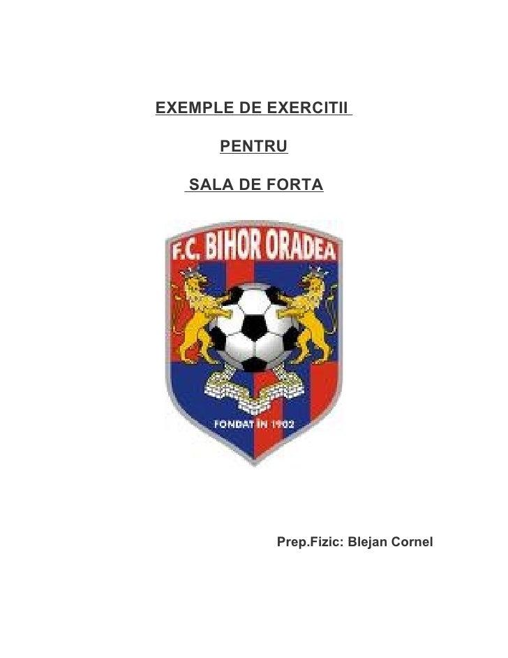 EXEMPLE DE EXERCITII      PENTRU   SALA DE FORTA            Prep.Fizic: Blejan Cornel