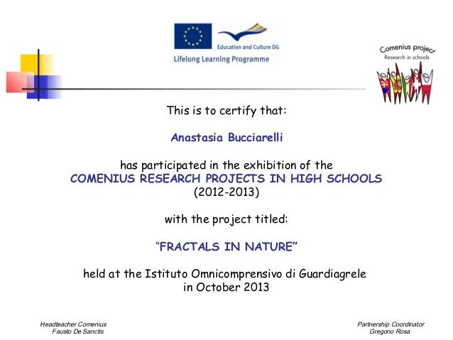This is to certify that: Anastasia Bucciarelli has participated in the exhibition of the COMENIUS RESEARCH PROJECTS IN HIG...