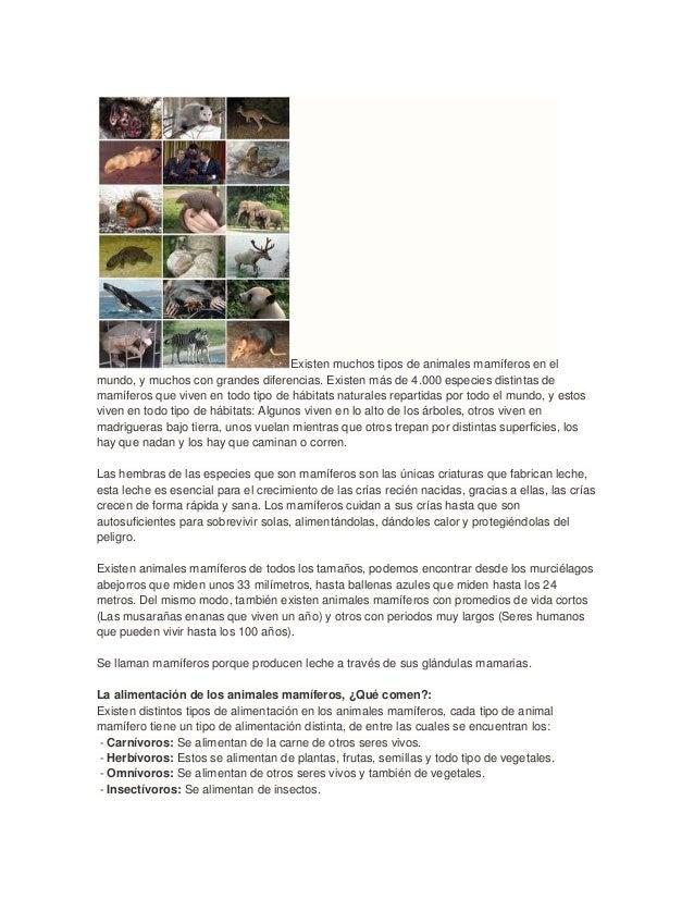 Existen muchos tipos de animales mamíferos en elmundo, y muchos con grandes diferencias. Existen más de 4.000 especies dis...