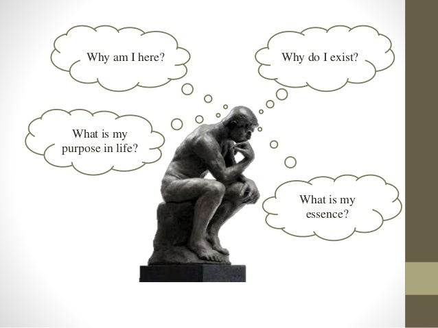 What is the purpose of philosophy?