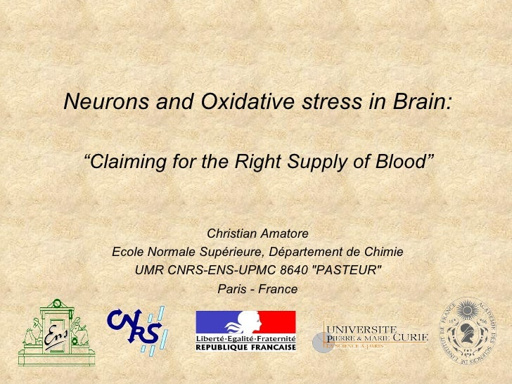 """Neurons and Oxidative stress in Brain: """"Claiming for the Right Supply of Blood"""" Christian Amatore Ecole Normale Supérieure..."""