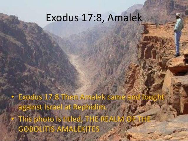 exodus 17 8 14 translocation