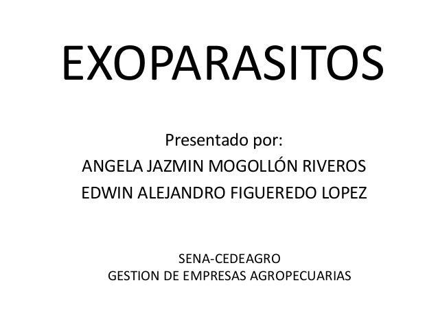 EXOPARASITOS         Presentado por:ANGELA JAZMIN MOGOLLÓN RIVEROSEDWIN ALEJANDRO FIGUEREDO LOPEZ            SENA-CEDEAGRO...