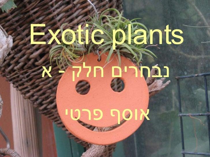 Exotic plants נבחרים חלק  -  א אוסף פרטי