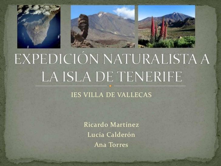 Expedición naturalista a la isla de tenerife