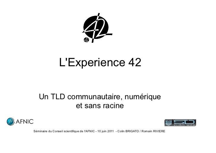 LExperience 42   Un TLD communautaire, numérique            et sans racineSéminaire du Conseil scientifique de lAFNIC - 10...