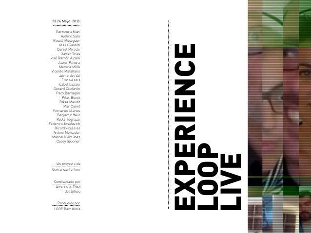 Experience loop live_2013