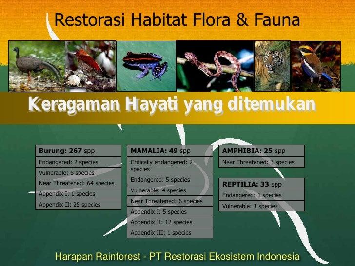 Habitat Restoration Flora & Fauna