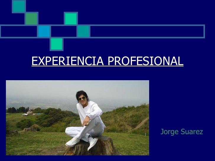 Experiencia profesional valenza