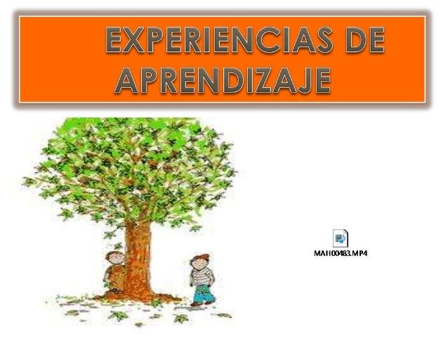 Experiencias de aprendizaje eli
