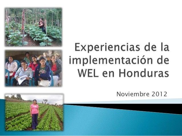 Experiencias de la implementación de wel en honduras 13 nov2012