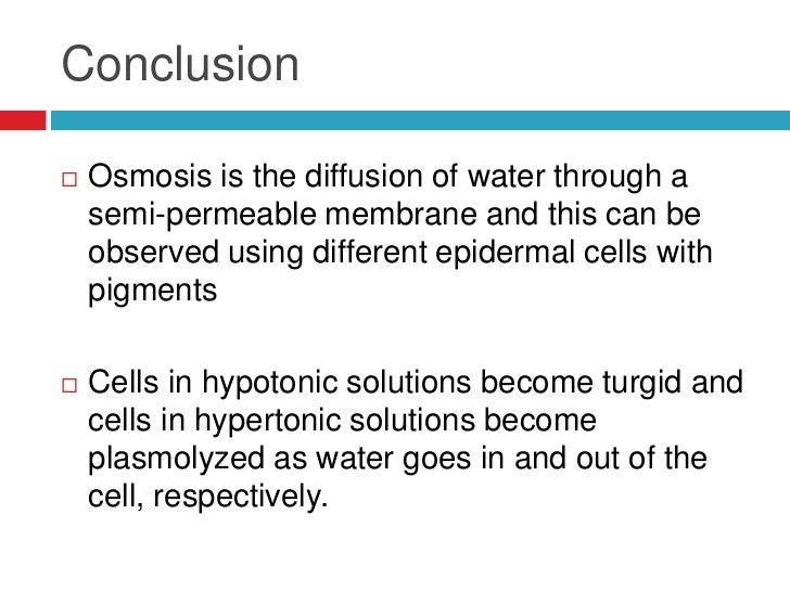 conclusion on plant and animal cell It is important that you know the structure of animal and plant cells and are  plant cells have the nucleus to the side of the cell, animal cells have a.