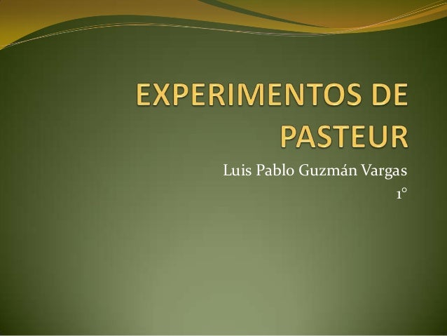 Luis Pablo Guzmán Vargas 1°