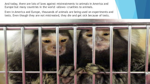 What are laws that involve animal testing in all countries?