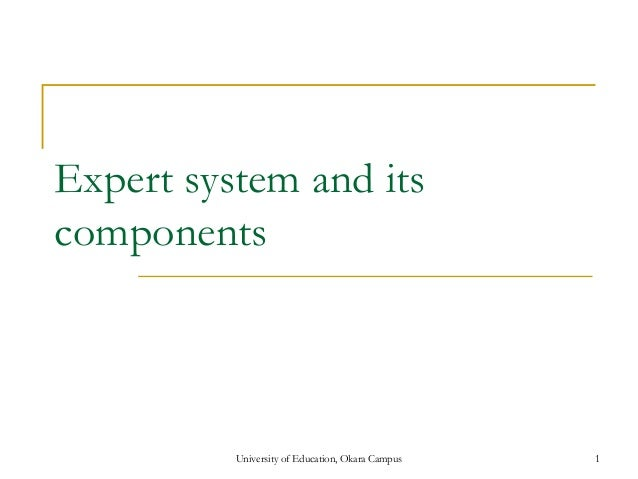 Expert system and its components University of Education, Okara Campus 1