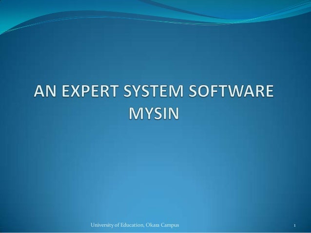 Expert System - Examples