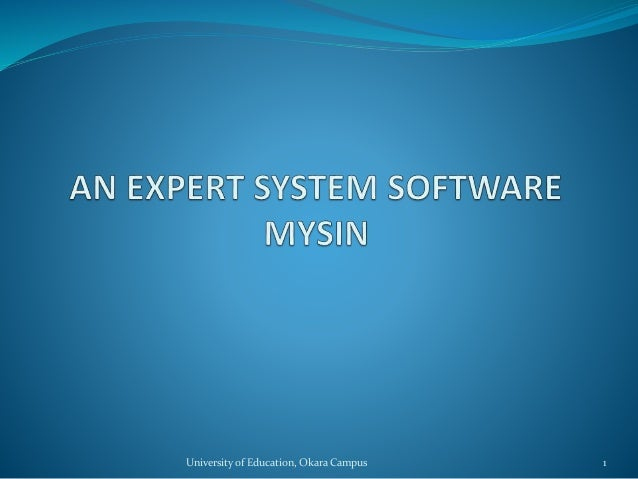 Expert system (examples)