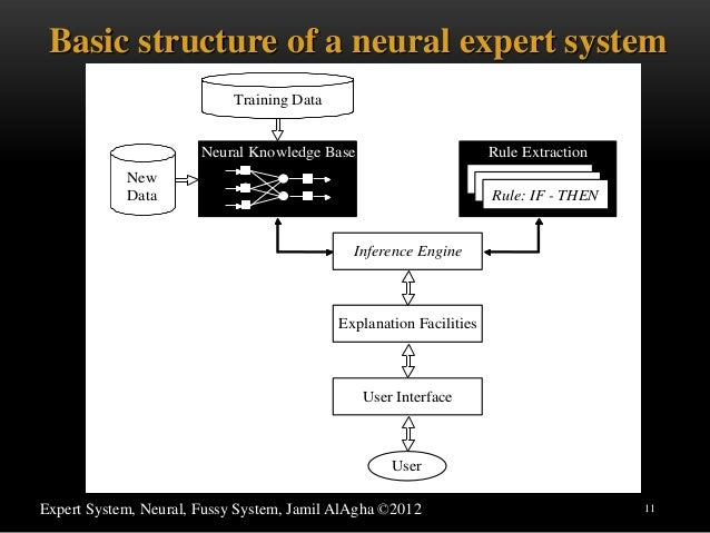 fuzzy expert system thesis