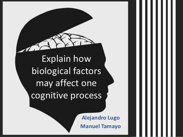 explain how biological factors may affect The new topic explain how biological factors may affect one cognitive process is one of the most popular assignments among students' documents if you are stuck with writing or missing ideas, scroll down and find inspiration in the best samples.