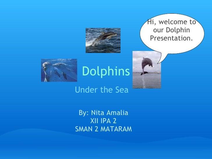 Explanation by ni ta amalia   dolpin