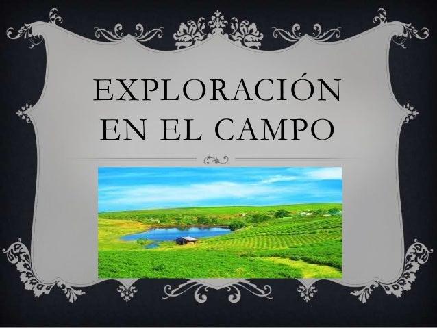 EXPLORACIÓN EN EL CAMPO