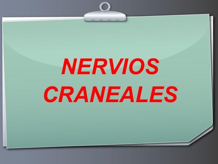 Exploracion de pares craneales for 12 paredes craneales