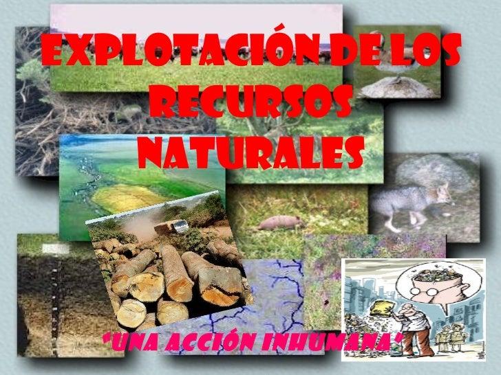 la problematica de los recursos naturales:
