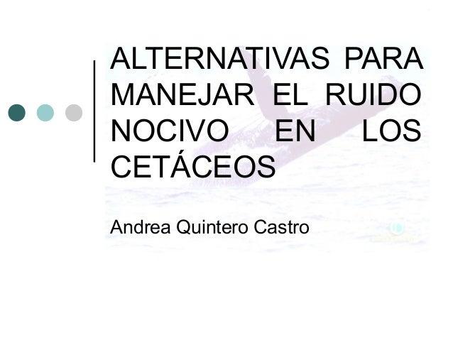 ALTERNATIVAS PARA MANEJAR EL RUIDO NOCIVO EN LOS CETÁCEOS Andrea Quintero Castro