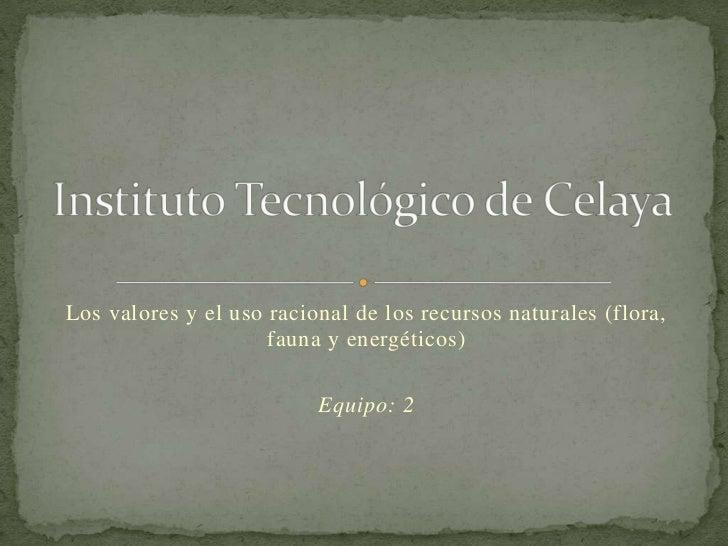 Instituto Tecnológico de Celaya<br />Los valores y el uso racional de los recursos naturales (flora, fauna y energéticos)<...