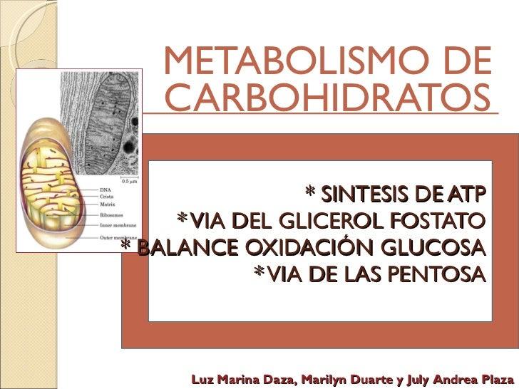 * SINTESIS DE ATP * VIA DEL GLICEROL FOSTATO * BALANCE OXIDACIÓN GLUCOSA * VIA DE LAS PENTOSA METABOLISMO DE CARBOHIDRATOS...