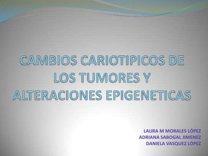 CAMBIOS CARIOTIPICOS DE LOS TUMORES Y ALTERACIONES EPIGENETICAS<br />LAURA M MORALES LÓPEZ<br />ADRIANA SABOGAL JIMENEZ<br...