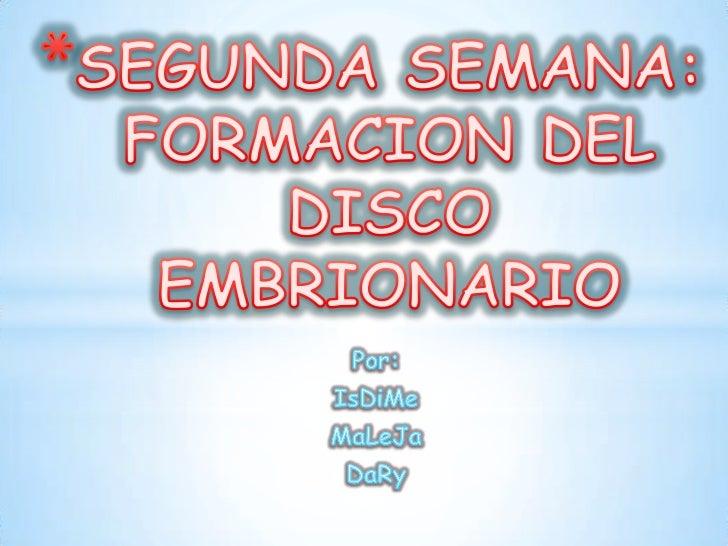 SEGUNDA SEMANA: FORMACION DEL DISCO EMBRIONARIO<br />Por: <br />IsDiMe <br />MaLeJa<br />DaRy<br />