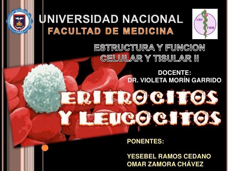 Eritrocitos y Leucocitos