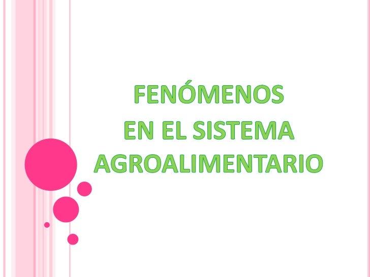 Expo fenomenos en sistema agroalimentario