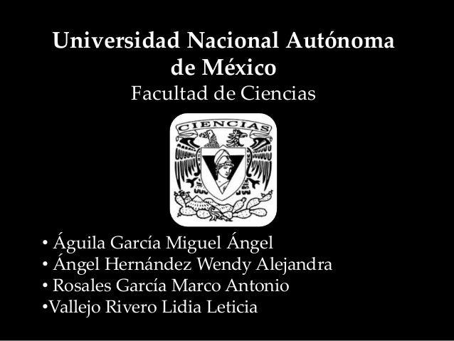 Universidad Nacional Autónoma de México Facultad de Ciencias • Águila García Miguel Ángel • Ángel Hernández Wendy Alejandr...