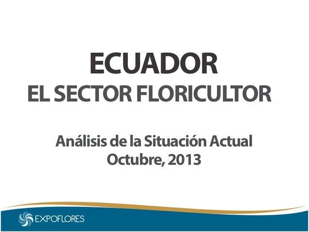 ECUADOR  EL SECTOR FLORICULTOR Análisis de la Situación Actual Octubre, 2013