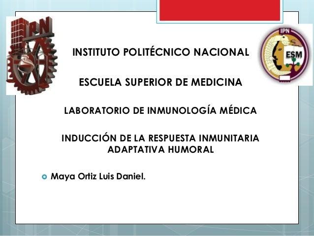 INSTITUTO POLITÉCNICO NACIONAL ESCUELA SUPERIOR DE MEDICINA LABORATORIO DE INMUNOLOGÍA MÉDICA INDUCCIÓN DE LA RESPUESTA IN...
