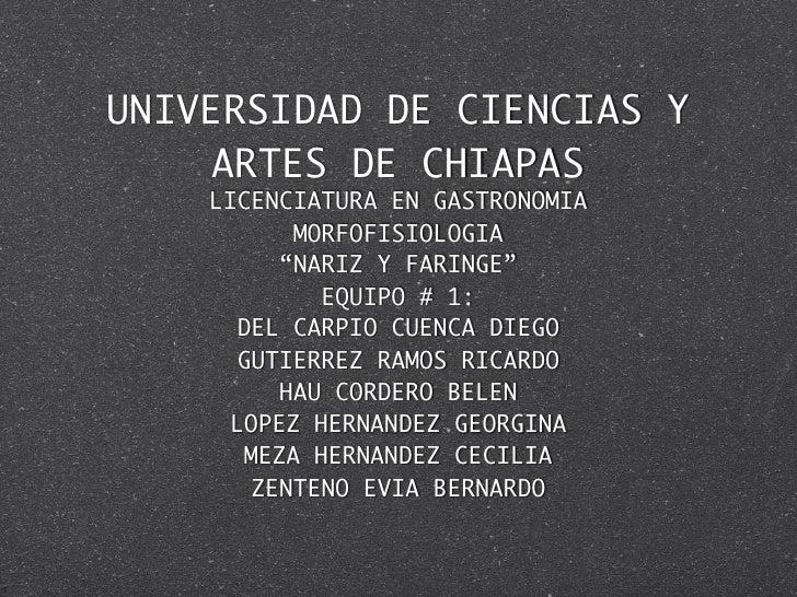 """UNIVERSIDAD DE CIENCIAS Y    ARTES DE CHIAPAS    LICENCIATURA EN GASTRONOMIA          MORFOFISIOLOGIA         """"NARIZ Y FAR..."""