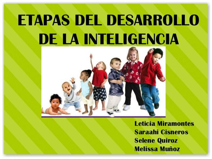 ETAPAS DEL DESARROLLO DE LA INTELIGENCIA Leticia Miramontes Saraahi Cisneros Selene Quiroz Melissa Muñoz