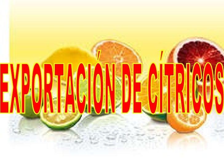 EXPORTACIÓN DE CÍTRICOS