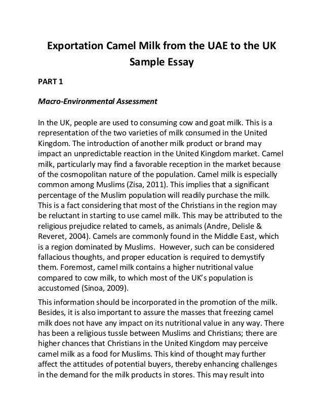 politics essay writing tips