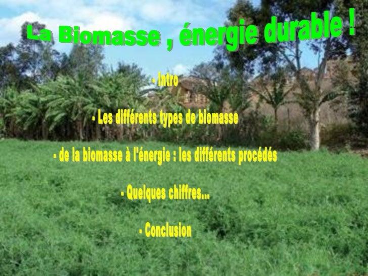La Biomasse , énergie durable ! - Intro - Les différents types de biomasse - de la biomasse à l'énergie : les différents p...