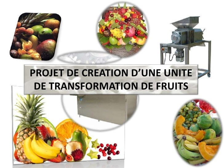 PROJET DE CREATION D'UNE UNITE <br />DE TRANSFORMATION DE FRUITS<br />04/06/2009<br />1<br />