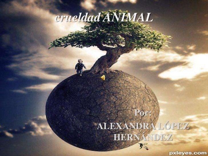 crueldad ANIMAL            Por:      ALEXANDRA LÓPEZ         HERNÁNDEZ