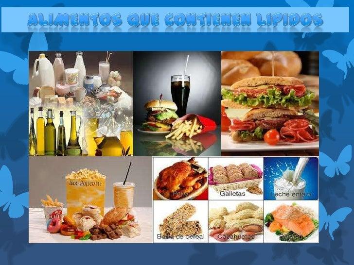 Exposicion alimentos que contienen lipidos - Alimentos con probioticos y prebioticos ...