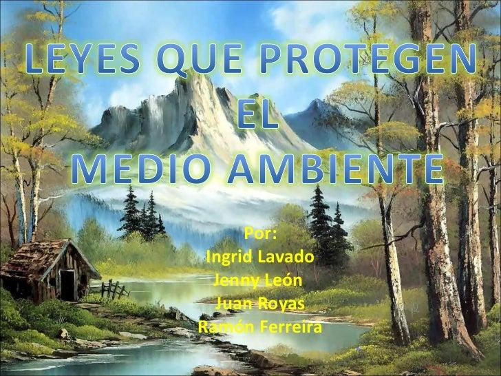 leyes peru: