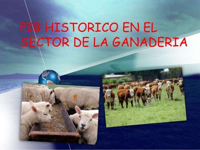 Exposicion del pib historico en la ganaderia