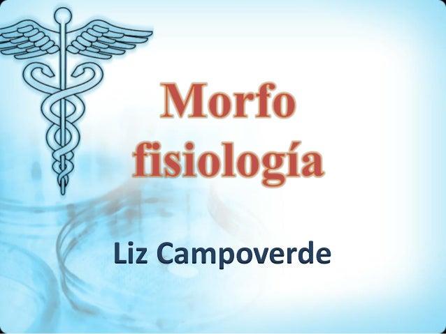Liz Campoverde