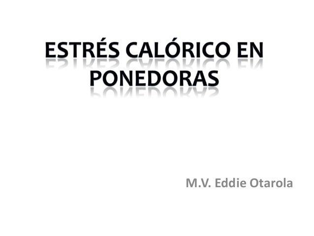 M.V. Eddie Otarola