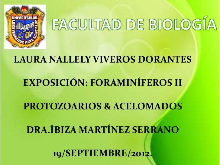 LAURA NALLELY VIVEROS DORANTES EXPOSICIÓN: FORAMINÍFEROS II PROTOZOARIOS & ACELOMADOS  DRA.ÍBIZA MARTÍNEZ SERRANO      19/...